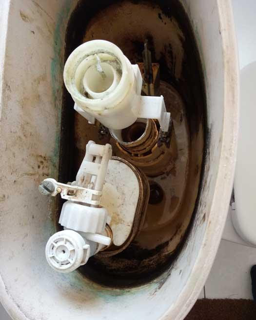 Замена сливного и наполнительного устройства воды, с последущей установкой нового аэратора